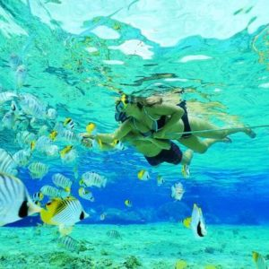 Snorkeling-Dominican-Republic