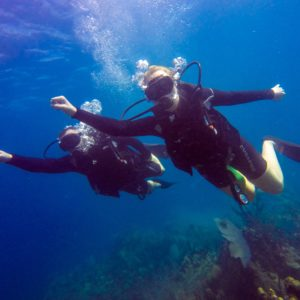 catalina-island-with-scuba-diving-full-day-tour_494347