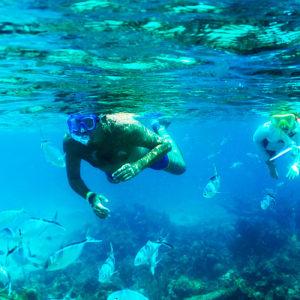 catalina-snorkel