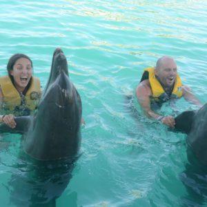 delfín-danza-océano-mundo-dominicano-república
