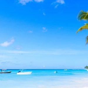 go-on-a-private-excursion-to-saona-island-310-1024×480