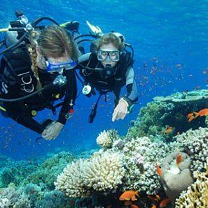 scuba-diver-large-1